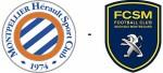 Logos MHSC et FCSM