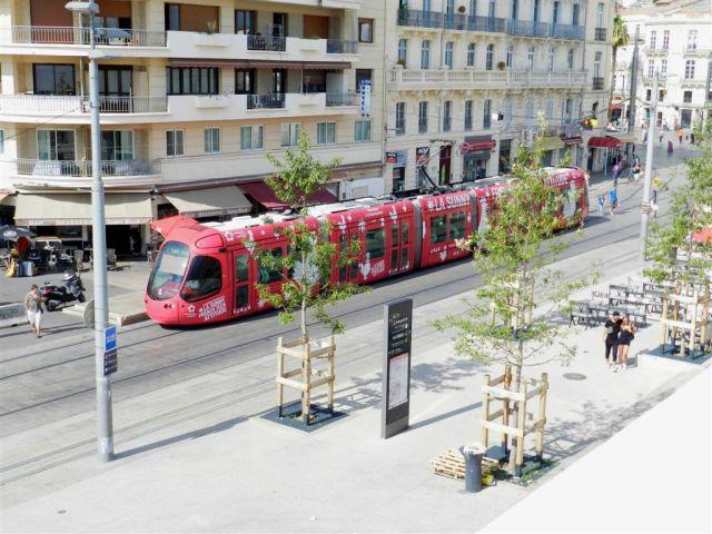 Abonnement annuel étudiant de moins de 26 ans, Montpellier recule à la sixième place en cette rentrée 2016. Sur la photo prise rue Jules-Ferry à Montpellier, le mardi 30 août 2016, la rame 2048 Citadis 302 Alstom multilignes. Copyright : Anje34
