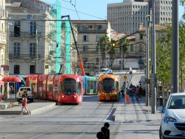 """Sur la photo prise place Auguste-Gibert à Montpellier, le lundi 5 septembre 2016 en milieu de matinée, la rame 2048 Citadis Alstom """"La Sunny French Tech Attitude"""" opérant sur la ligne 4, une rame fleurie Citadis 302 de la ligne 2, une caisse et un soufflet d'une rame Citadis 402 Alstom de la ligne 3 et une cabine d'une rame Citadis 401 Alstom à gauche. On devine la présence d'une cinquième rame, opérant sur la ligne 1, sur le haut de la rue Jules-Ferry. Copyright : Anje34"""