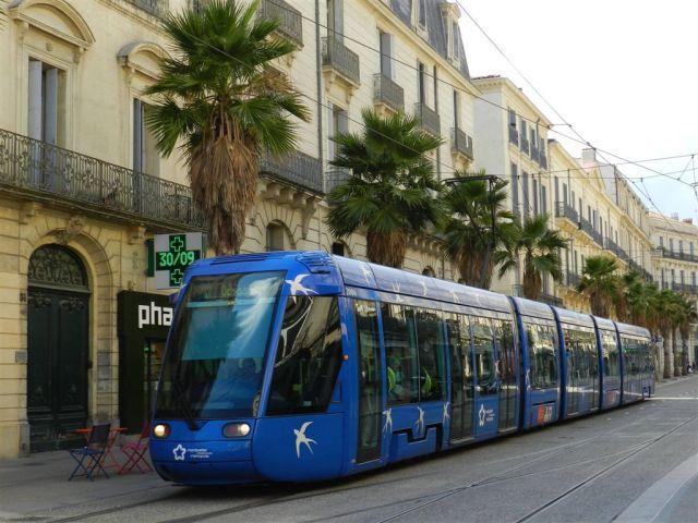 """La rame 2006 Citadis 401 Alstom opérant sur la ligne 1, à destination du terminus """"Odysseum"""", est photographiée boulevard du Jeu-de-Paume à Montpellier sur la voie de la ligne 4 sens 4b, entre la rue André-Michel et la place Edouard-Adam, le vendredi 30 septembre 2016. Copyright : Anje34"""
